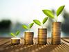 loi pinel 2021 - concept d'épargne avec des pièces de monnaie qui fleurissent