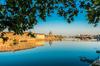 Actualité à Toulouse - Végétalisation à Toulouse : ces projets qui veulent rendre la ville plus respirable
